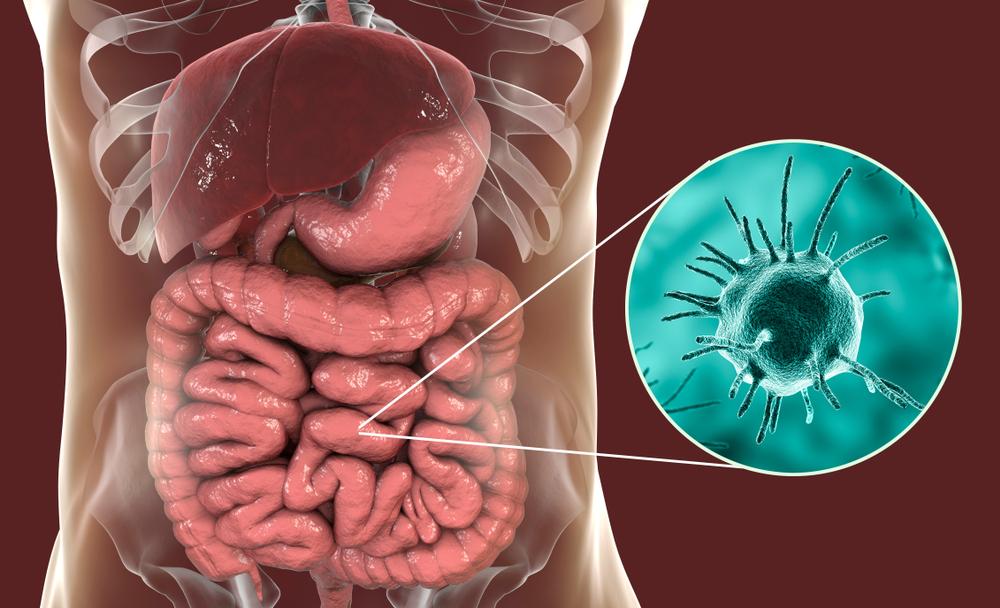 10 Symptoms of a Parasite - Facty Health